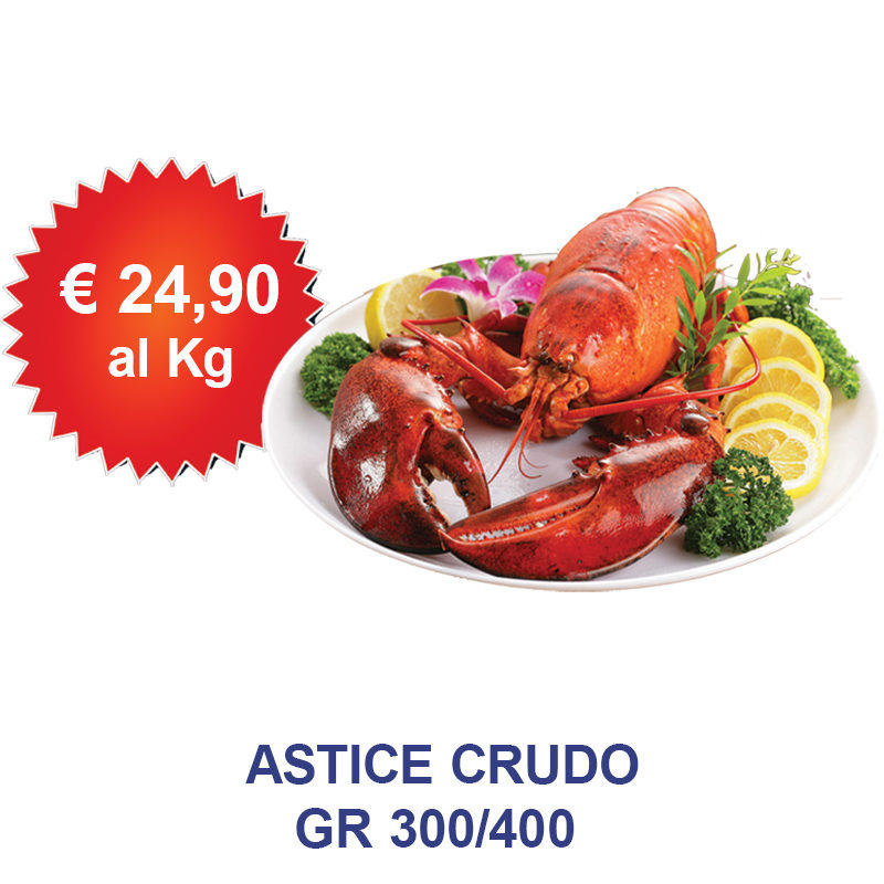 astice_crudo